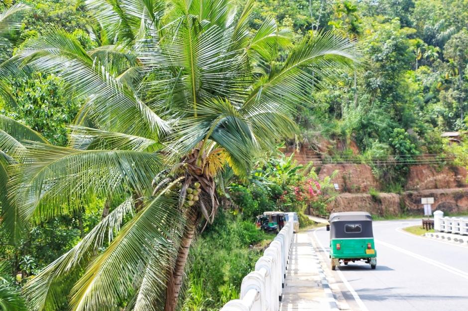 Tuk Tuk Sri Lanka NatnZin