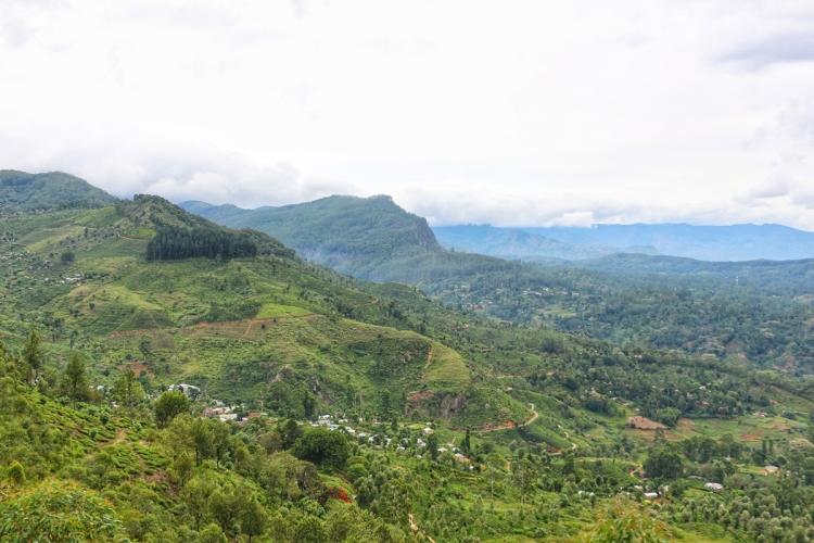 Haputale Sri Lanka NatnZin
