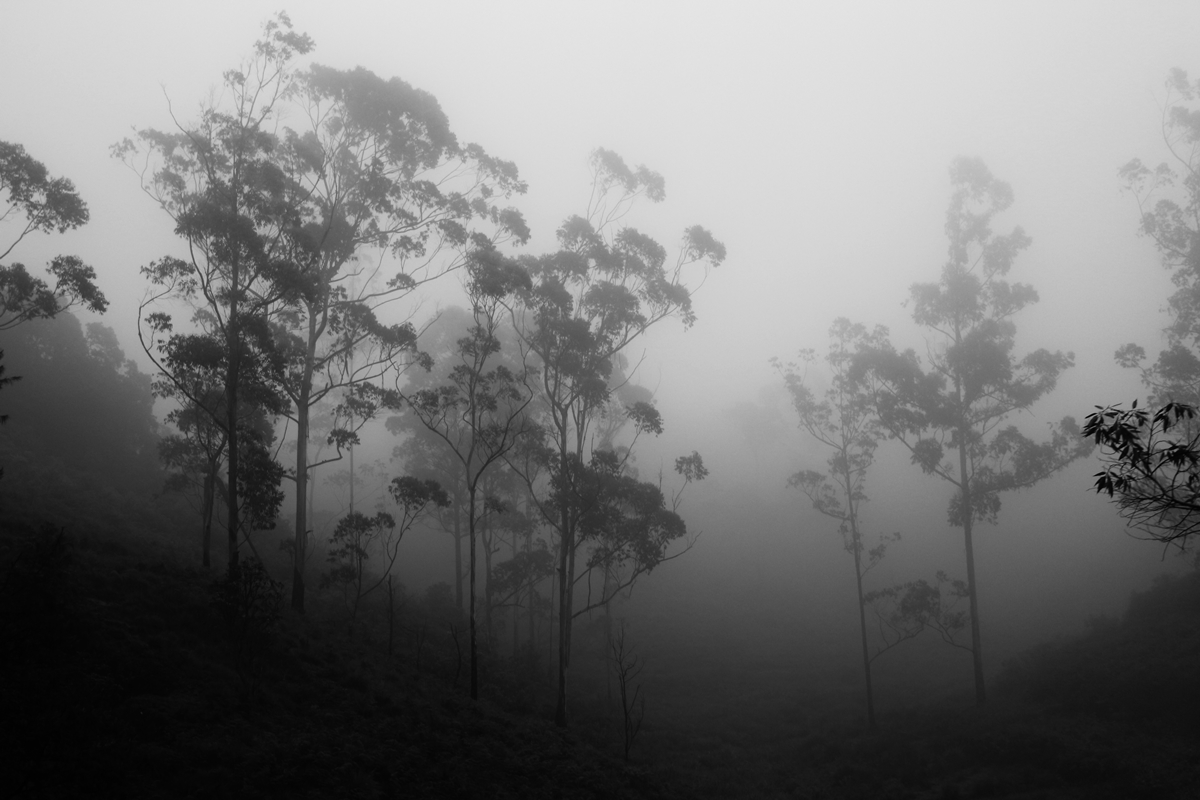 Mountains Sri Lanka NatnZin
