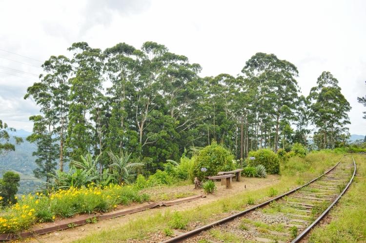 Railway Station NatnZin
