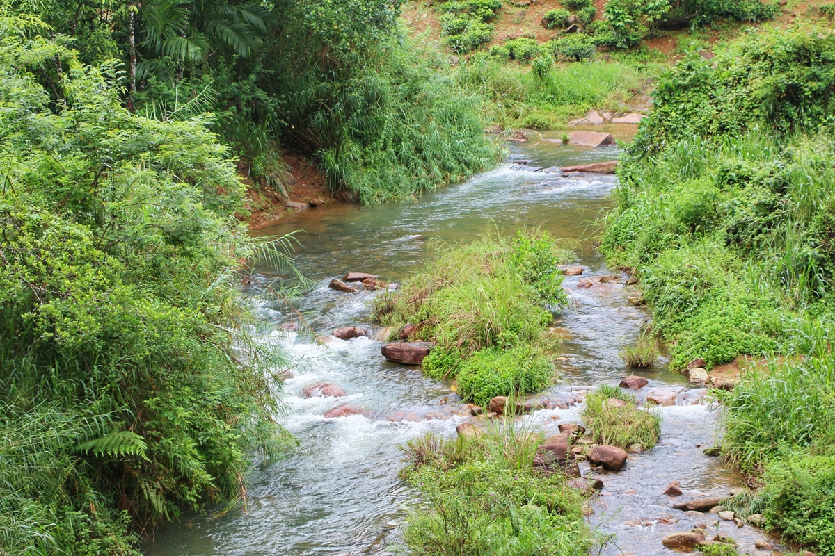 River Sri Lanka Kandy
