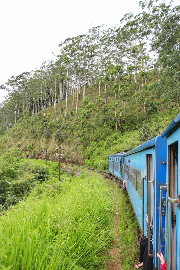 Train Ella Sri Lanka
