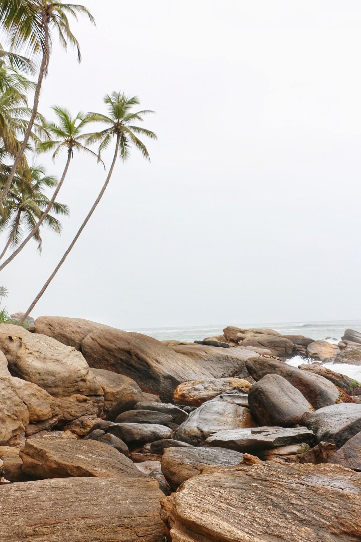 Goyambokka Sri Lanka NatnZin