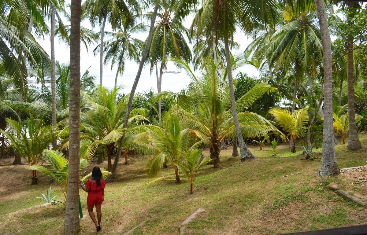 NatnZin Palm Paradise Tangalle