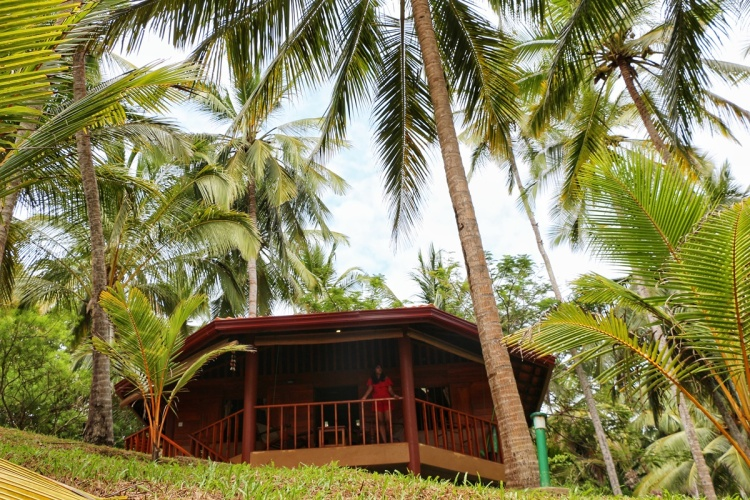 Palm Paradise Tangalle