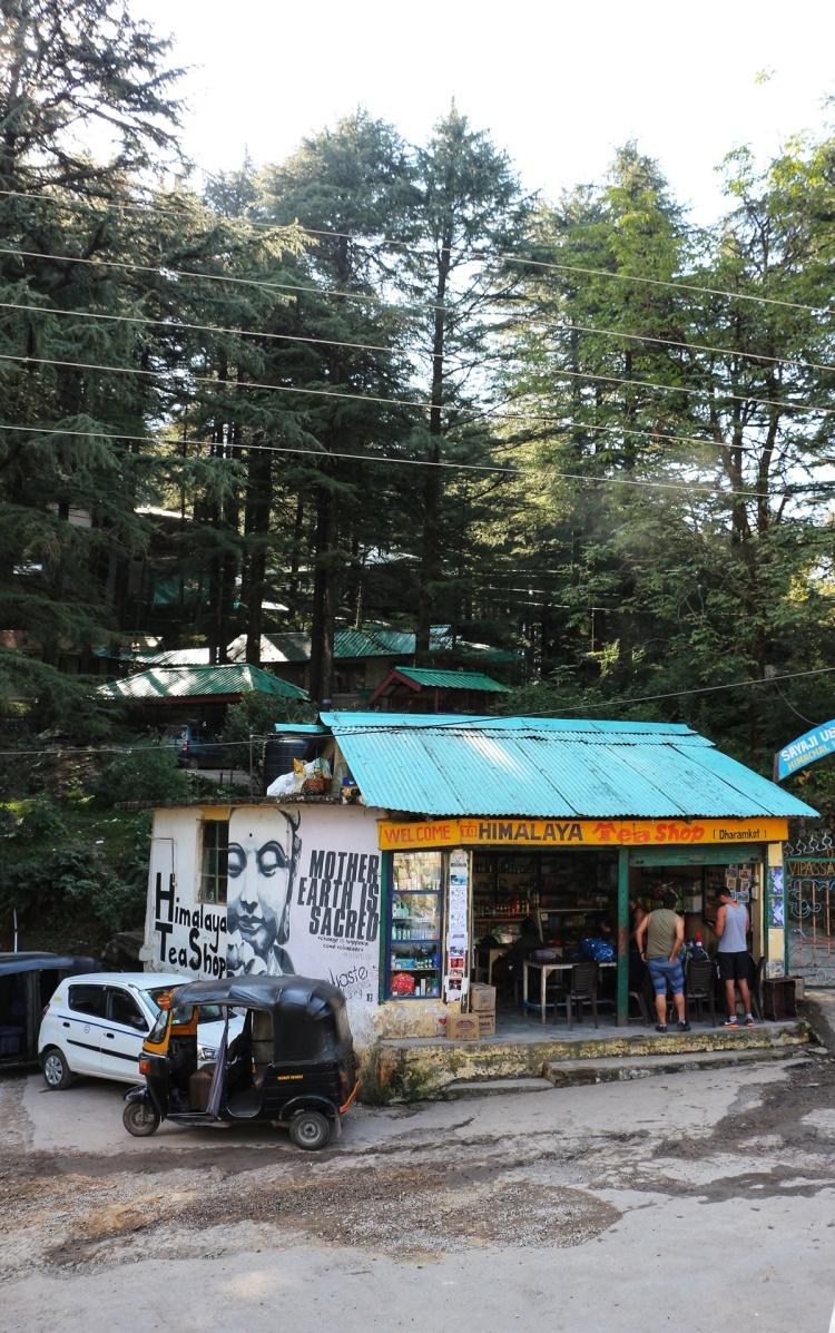 Himalayan Tea Shop Dharamkot
