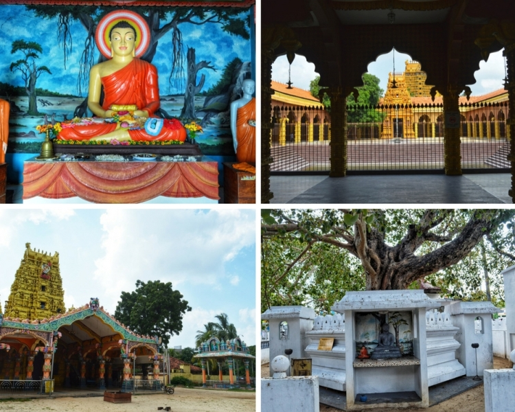 Jaffna Travel Blog