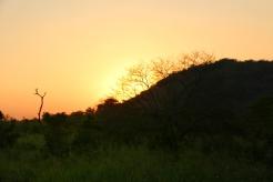 NatnZin-Safari-Sigiriya