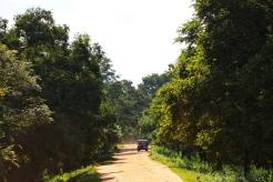 NatnZin-Sri-Lanka