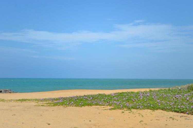 Beach Holiday Sri Lanka